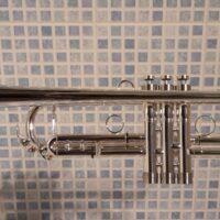 TrumpetGenevaRF8
