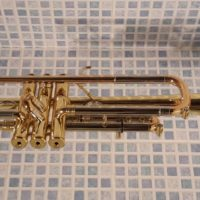 TrumpetGenevaSym8