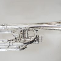 Boosey & Hawkes Sovereign Tenor Horn